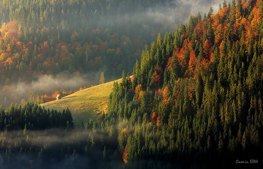 by Stan Cosmin Ovidiu